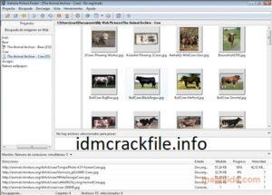 Extreme Picture Finder 3.53.6.0 Crack + Registration Key Free Download [2021]