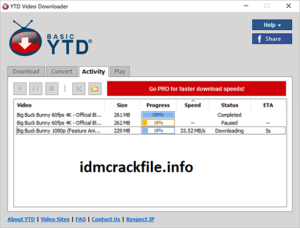 YTD Video Downloader 6.16.10 Crack + Activation Key Free Download [2021]